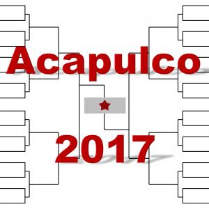 アカプルコ「アビエルト・メキシカーノ・テルセル」2017年トーナメント表(ドロー)結果あり:ジョコ、ナダル出場