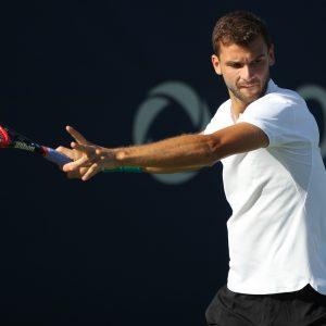 ディミトロフvsゴファン試合結果詳細:「ATPファイナル」2017年決勝